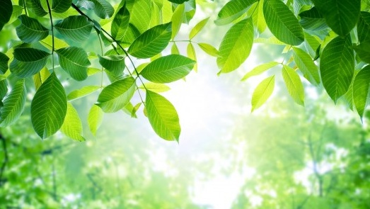 Artificial Photosynthesis Breakthrough Turns CO2 Emissions Into Plastics and Biofuel